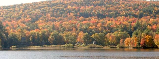 Fall foliage is spectacular