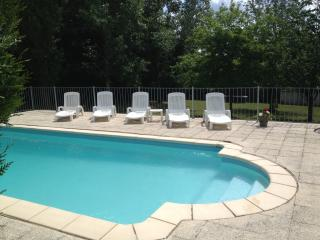 Private heated pool with walk in steps,  sun loungers and pool toys