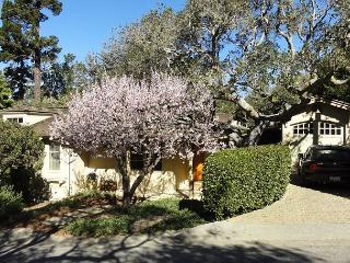 3712 Blue Skies - Walk to Town, Beach, Designer Updated Carmel Cottage