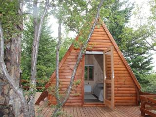 Golden Circle Cabin + Guesthouse, Arborg