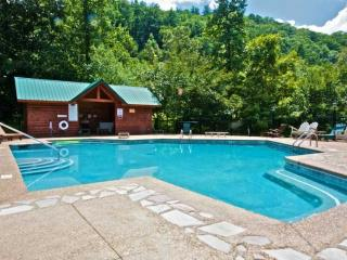 Go for a swim in the gorgeous community pool!
