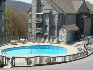 The Summit #3304 ~ Book for Fall in the Smokies!, Gatlinburg