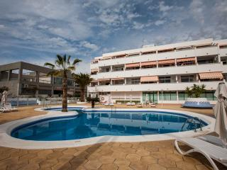 1 Bed Penthouse in Las Americas