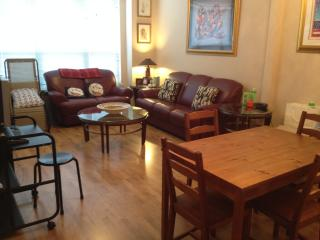 Perfect Cozy Apartment walking distance to metro, McLean