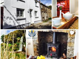 Nant Melyn Cottage - Visit The Brecon Beacons & Waterfall Country. Dogs Welcome