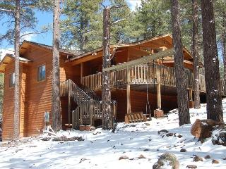 Luxury Cabin in the Pines on 3 Acres, Flagstaff