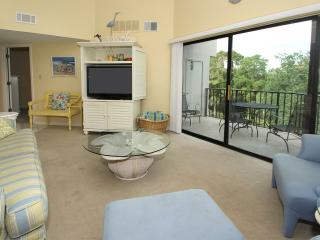 Forest Beach Villas, 423, Hilton Head