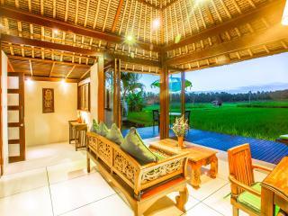 Amazing RiceField Views with Infinity Pool Villa Asmara, Ubud