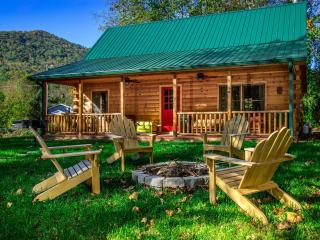 Creekside Cabin Only Minutes to Downtown Asheville