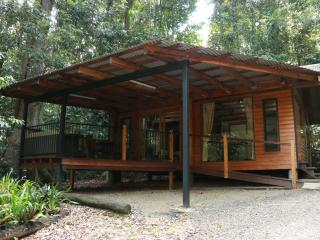 Fully self contained  cabin nestled in  the rainforest with all weather veranda
