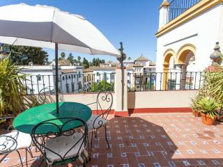SANTA CRUZ PRIVATE TERRACE, Seville
