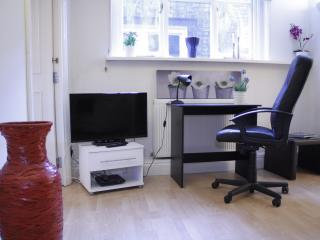 Beautiful & Modern City Flat AC3a, London