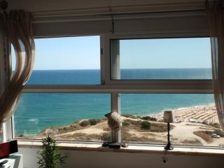 LUX. SEAFRONT APARTMENT MIRAMAR FANTASTIC SEAVIEWS. WIFI. SAT/MEO/BBC. GARAGE
