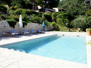 06.341 - Newly renovated v..., Vence