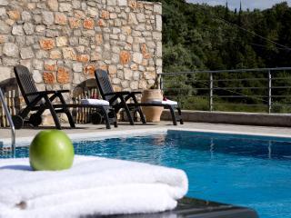 Swimming pool - Garden  Sea View