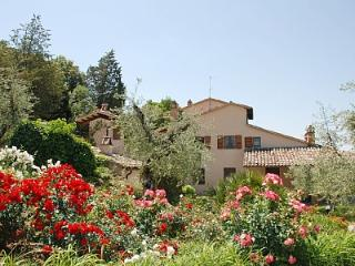 Villa Elciarelli, surrounded by Olive Trees -Pool, Baschi