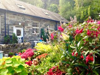 Cosy Country Cottage Snowdonia National Park, Penmaenpool