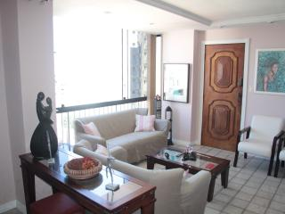 Condo apartment closed to Porto da Barra Beach