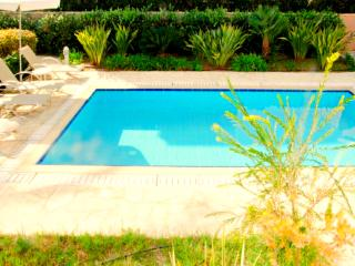 Exclusive Villa Samaliana - Private Sandy Beach, Argaka