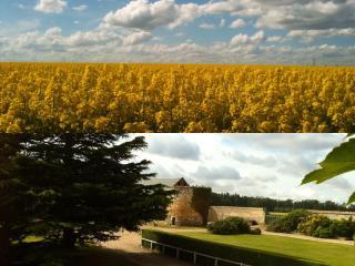 Résidences du CLOS DU MANOIR Cottage FLEUR DE LIN, Gauciel