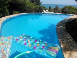 Villa next to the sea with private pool and air conditioning