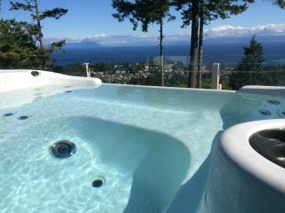 Spectacular Ocean/Mountain View, Nanaimo