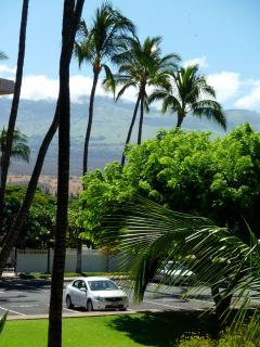 Looking out towards Haleakala