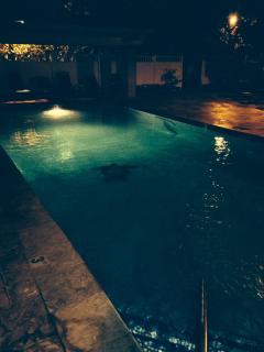 Upper pool, at night