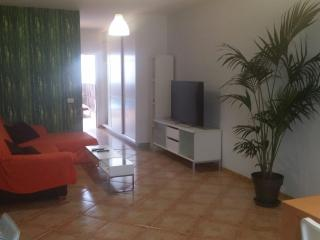GREAT APARTMENT IN GC ANTONIO 2, Vecindario