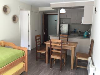 Amplio y cómodo espacio de living, comedor y cocina