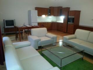 Charming stylish flat downtown prague-Wenceslas sq, Prague