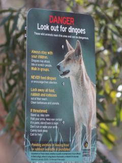 Treat wildlife with respect.