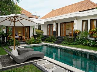 3 BR Villa Aura with a big pool Seminyak - Umalas