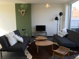 Comfortable Rooftop Apartment, Oudenaarde