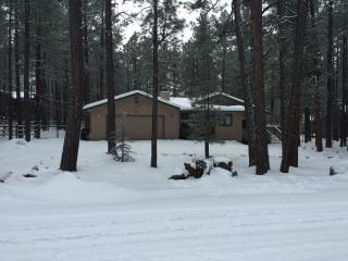 Pinetop Country Club Home-12 Person Luxury Getaway