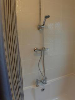 Gas heated shower