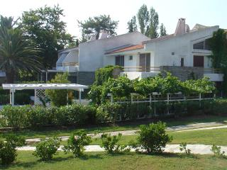 Sea Front Coast Villa in Chalkidiki