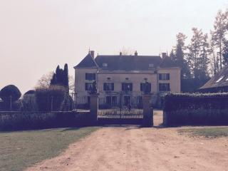 chateau de martigny, Poisson