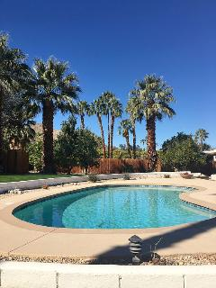 New to Market Modern Desert Retreat 1/2 acre, pool
