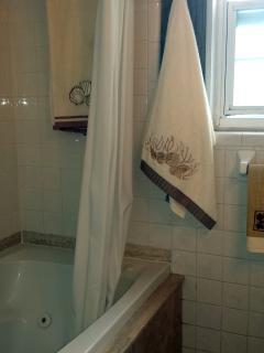 Jacuzzi bath-tub