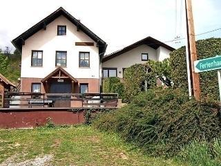 Kainz, Viena