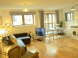Superb 2 Bed Apt Temple Bar Dublin 2