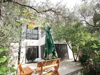 Modern Villa with a green area, 200m from the sea, Petrovac