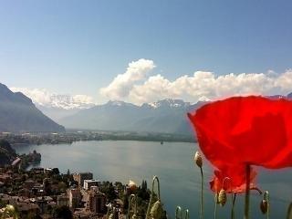 Flaminia, Montreux