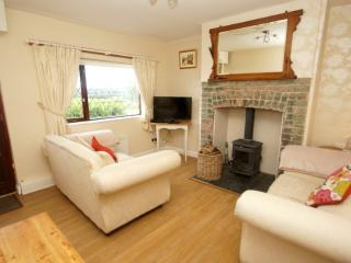 2 Bedroom terraced 19th centuary cottage in Area of outstanding beauty N.Wales, Nercwys