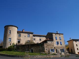 Vivez votre rêve dans un château du 12 15eme, Saint-Bonnet-le-Chastel