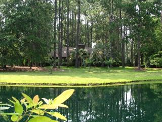 The privacy, and serenity of our house and lagoon can be seen here.