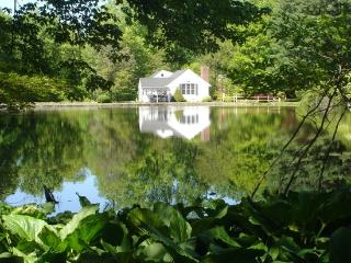 Country Home with Pond on 11 Acres