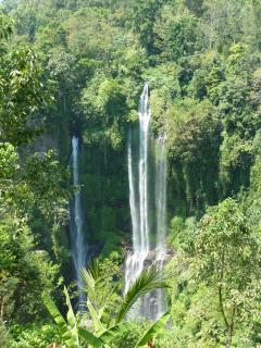 7 Wasserfälle (Sekumpul)