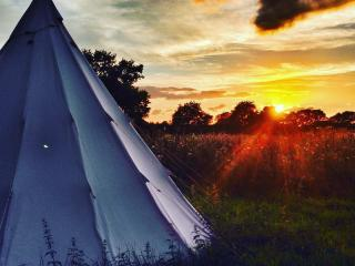 Wild Harvest Tipis and Activities - Groups Welcome, Sutton on Derwent